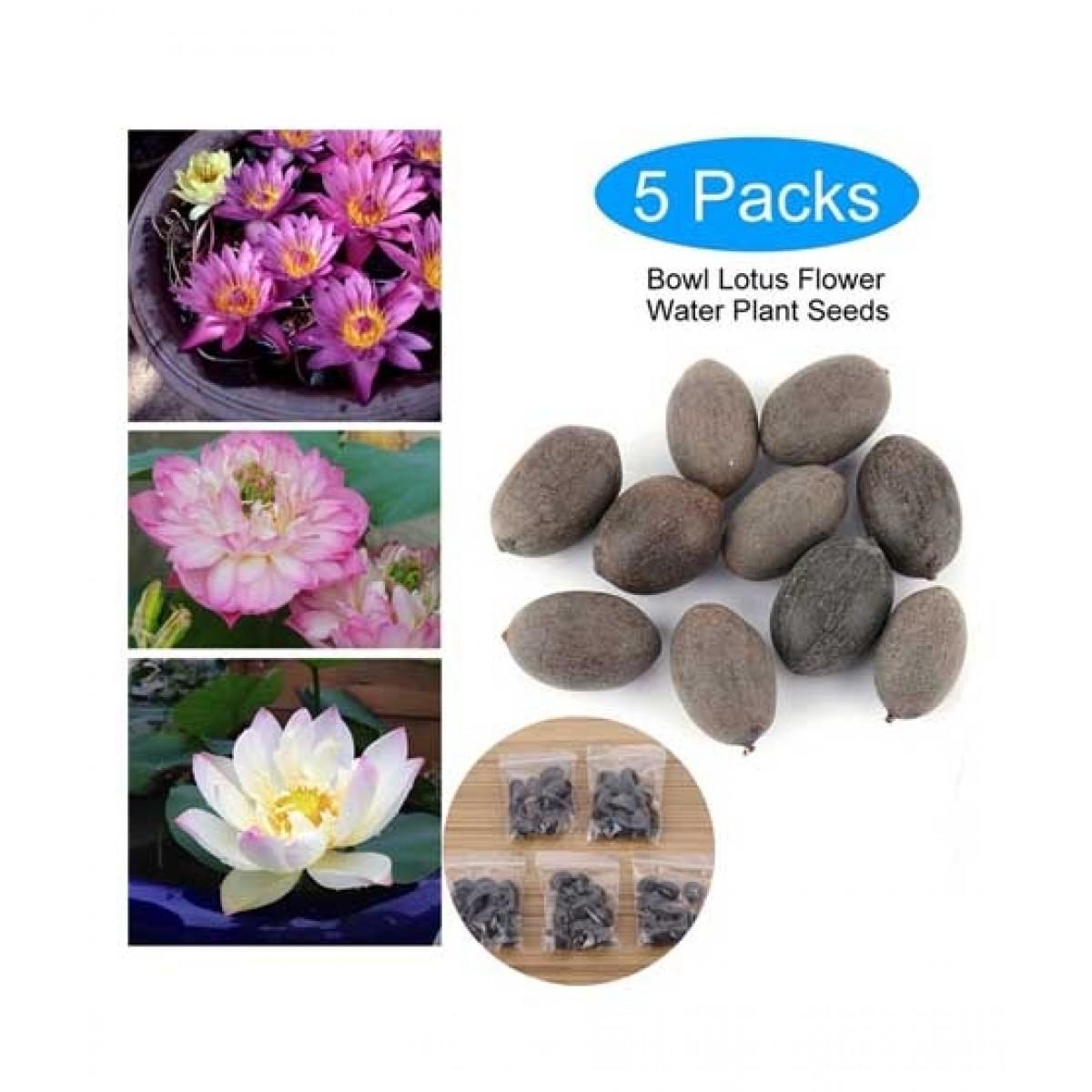 Diy Store Lotus Aquatic Mix Plant Seeds