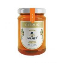 Harcheeez.Pk Mr Bee Citrus Honey (400gm)