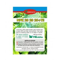 Diy Store All Purpose Balanced Fertilizer For All Plants 250g