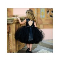 FashionValley Sequined Princess Dress For Girls (0029)