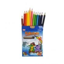 Hamza Stationary Oro Color Pencil Box - 12 Pcs