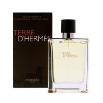 Hermes Terre D'Hermes EDT Perfume for Men 100ML