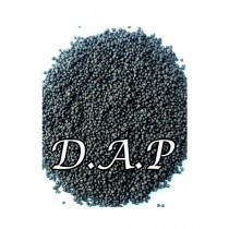 Leaf Gardening Dap Fertilizer For All Plants & Gardening Purpose