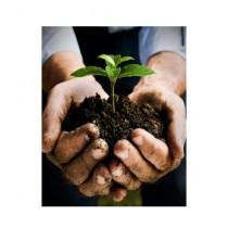 Leaf Gardening Organic Compost Fertilizer