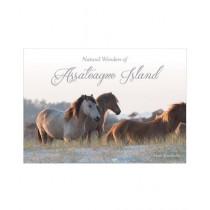 Natural Wonders of Assateague Island Book 1st Edition