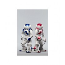 Pride Collection Interactive Intelligent Robot Toy
