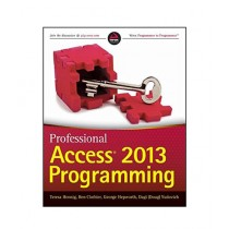 Professional Access 2013 Programming Book 1st Edition
