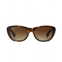 RayBan Polarized Women's Sunglasses RB4227