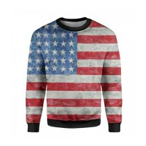 The Warehouse American Flag Printed Sweatshirt For Unisex (SS-03)