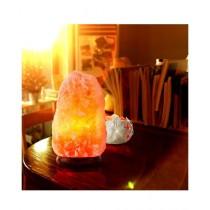 Trenders Salt Lamp For Home Decoration