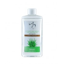 WB By Hemani Intensive Care Therapy Aloe Vera Hair Tonic With Argan Oil 120ml