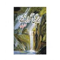 Zindagi Gulzaar Hai Book