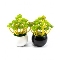 ZS Store Artificial Plant & Pots Ceramic For Home Decoration - Pack of 2