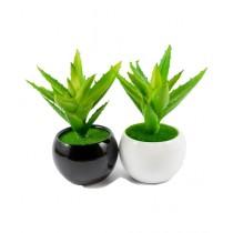 ZS Store Artificial Plant Bonsai Pot Ceramic - Pack of 2